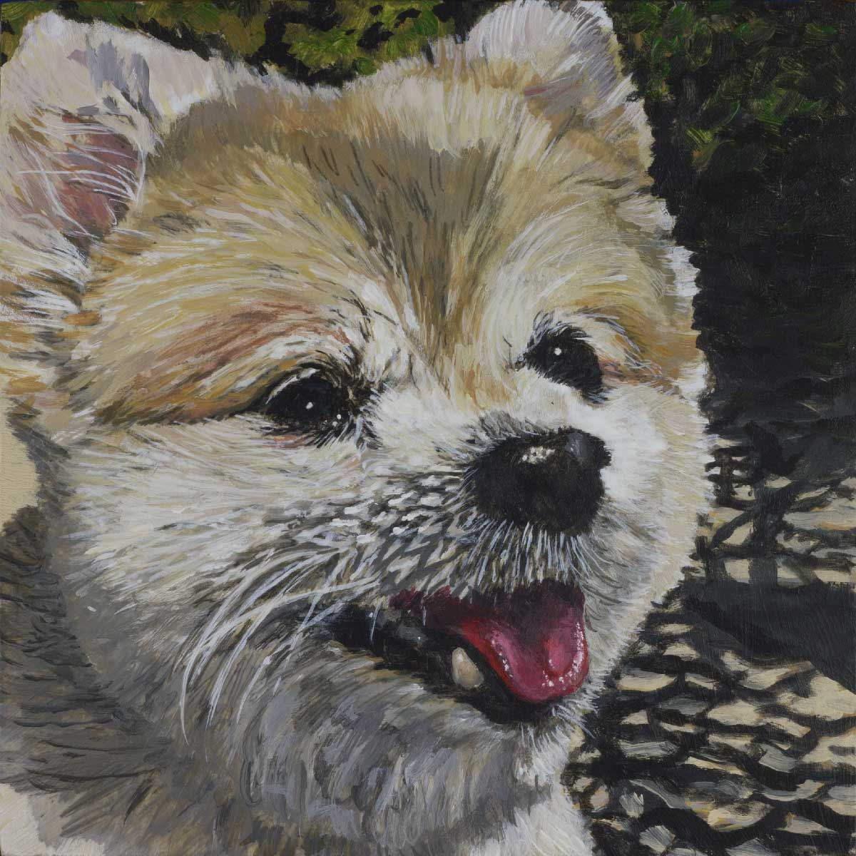"""small pet portrait by Steve Miller titled, """"Zoe"""", completed October, 2018"""